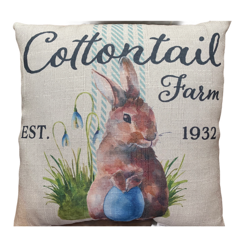 Peter Cottontail Pillow