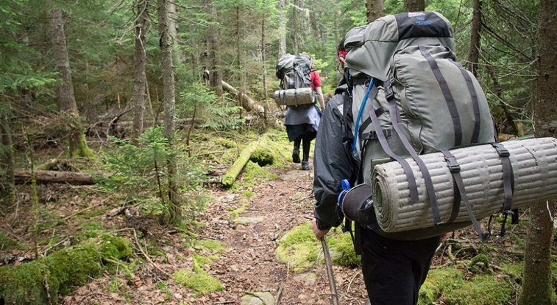 Backpackers hiking pacific crest trail