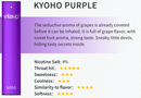 Vitavp Disposable Pod Kyoho Purple Flavor available at the best prices at Smokly.com