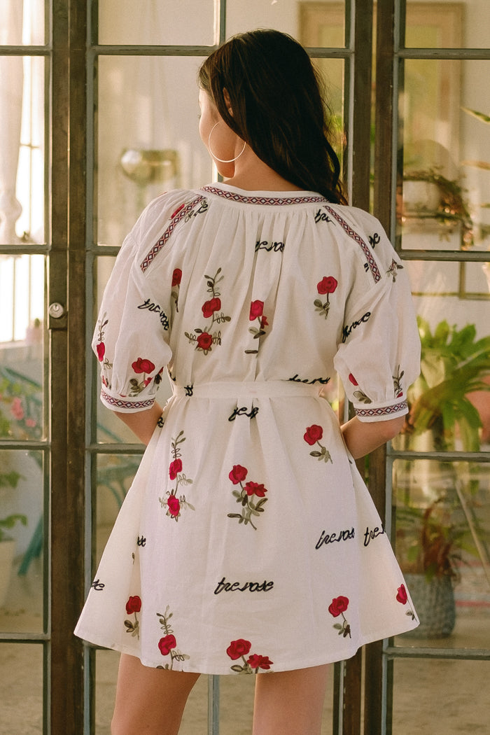 The Rose Embroidered Cotton Mini Dress