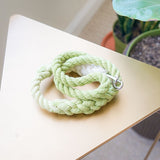 Green ombre traffic leash