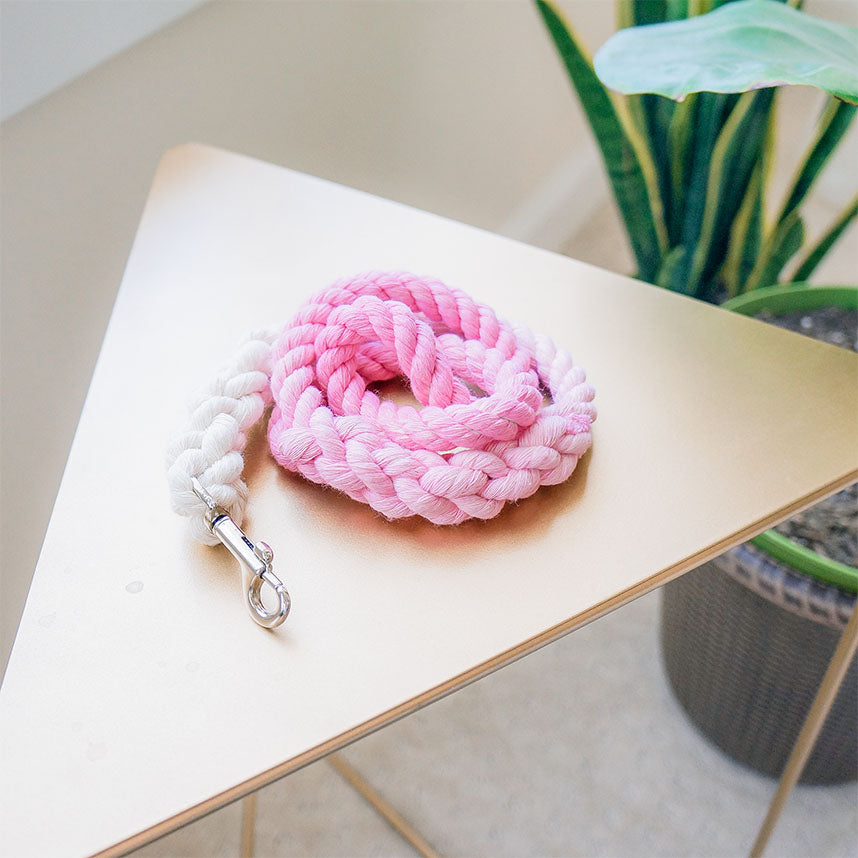 Pink ombre traffic leash