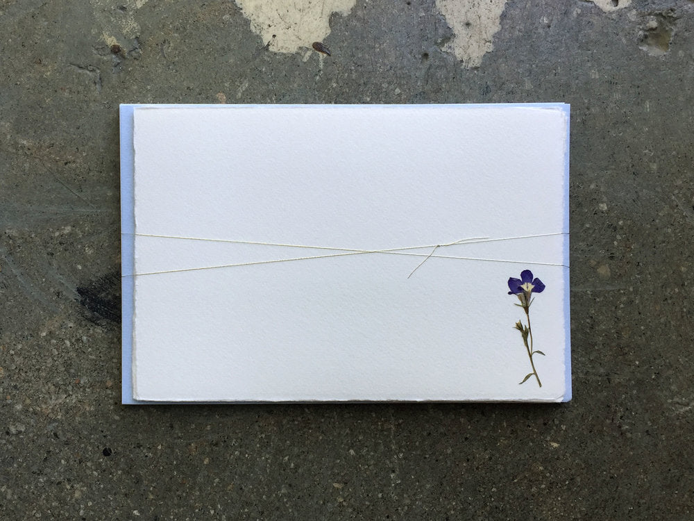 Soolip Pressed Flower Note Cards- Love-in-a-Mist, Set of 6