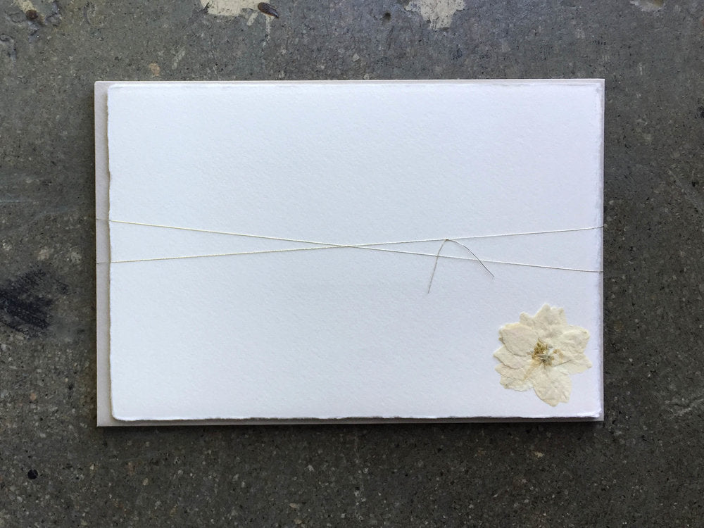 Soolip Pressed Flower Note Cards- White Larkspur, Set of 6