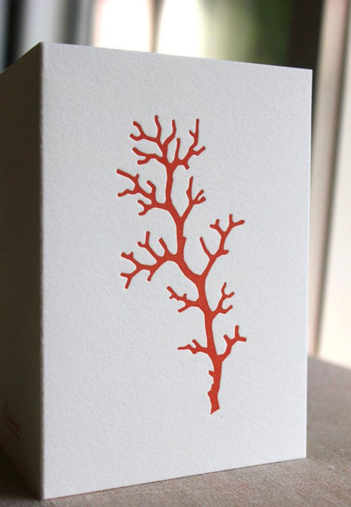 Ornament Letterpress Single Coral Branch Folded Cards