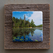 Load image into Gallery viewer, Algonquin - On Barn Board 0085