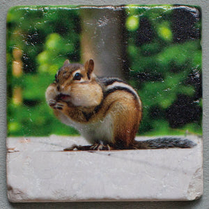 Chippy - Mouthful  Coasters #0013