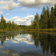Load image into Gallery viewer, Algonquin Tim River - Coasters #0322