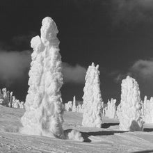 Load image into Gallery viewer, Snow Ghosts - Trivet #2121 BW