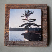 Load image into Gallery viewer, Muskoka Pine Point - On Barn Board 5142