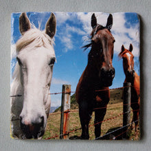 Load image into Gallery viewer, All Ears - Trivet #1024