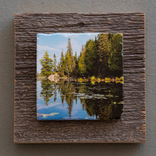 Load image into Gallery viewer, Algonquin - On Barn Board 6790