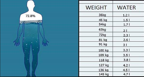 What Is Water Weight