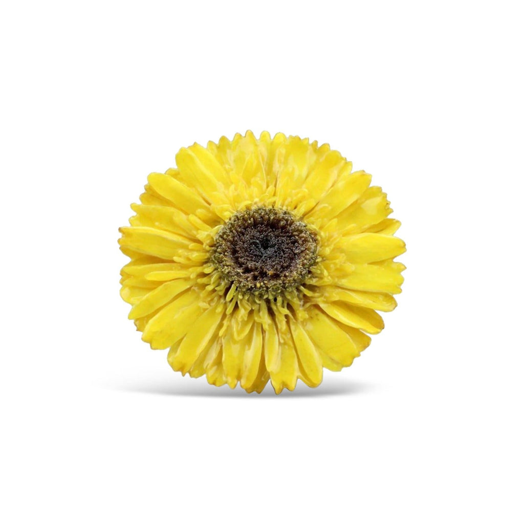 Yellow Gerbera Brooch & Necklace
