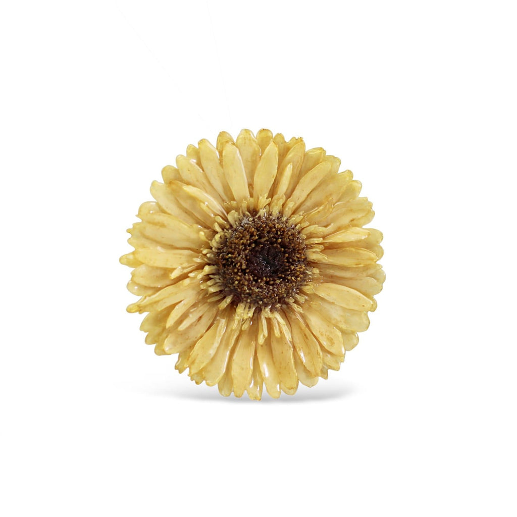 Creamy Gerbera Brooch & Necklace