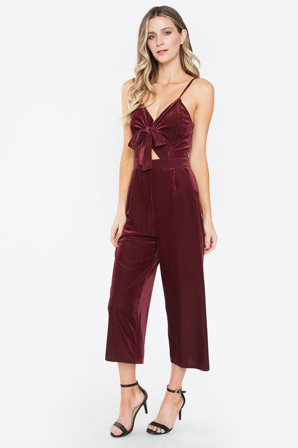 Velvet Teddy Jumpsuit