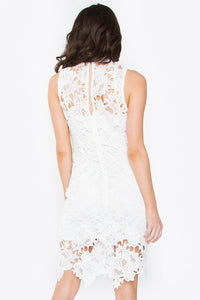 Estina Lace Dress