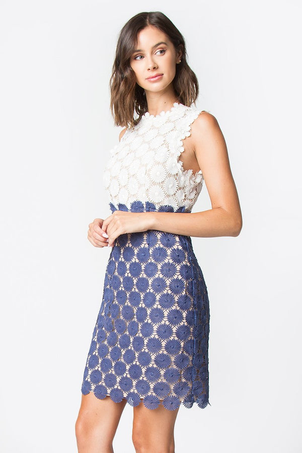 Kate Contrast Lace Dress