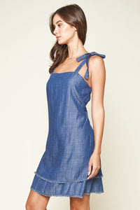 Texas Chambray Tie Sleeve Mini Dress