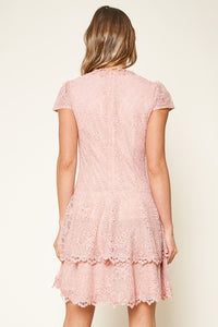 Ultimate Love Short Sleeve Lace Skater Dress