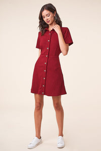 Oxford Button Up Mini Dress