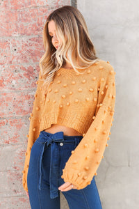 Kian Cropped Pom Pom Sweater
