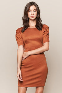 Talin Short Sleeve Ruched Knit Dress