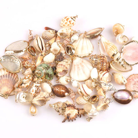 Mix Natural Shell Pendant 5 Pcs Gold Plated  for DIY handmade SeaShells Home decoration