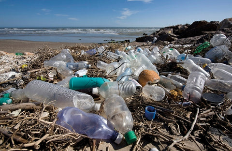 plastic bottles on a beach