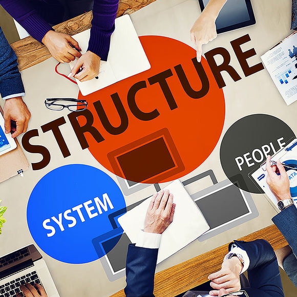 Organizational Structure and Business Planning - ONLINE ANYTIME