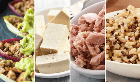 High In Protein Sources