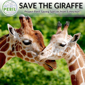 Save the Giraffe!