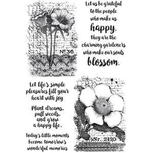 "Botanical Script Darkroom Door rubber stamp 7.25"" x 5"" - Scrap of Paradise"