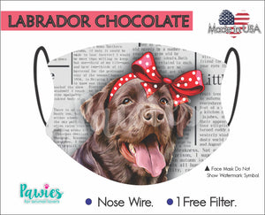 Open image in slideshow, Labrador Chocolate Face Mask
