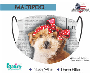 Open image in slideshow, Maltipoo Chocolate and White Face Mask