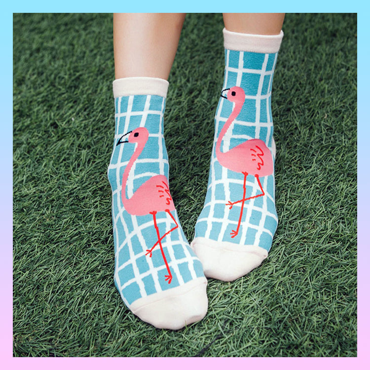 Flamboyant funky fun flamingo socks