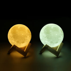 Customized Moon Lamp 3D Printing, Cute Pet-FCC Certified Valentine's Day Gift