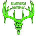 Blue Spruce Whitetails