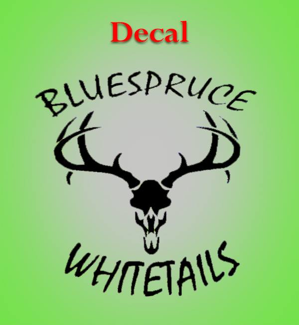 Blue Spruce Whitetails 8X8 Window decal