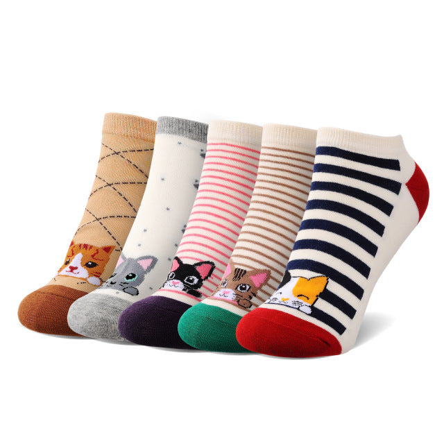 New Spring Summer Cute Cartoon Cat Socks for Female (5 Pairs/Set)