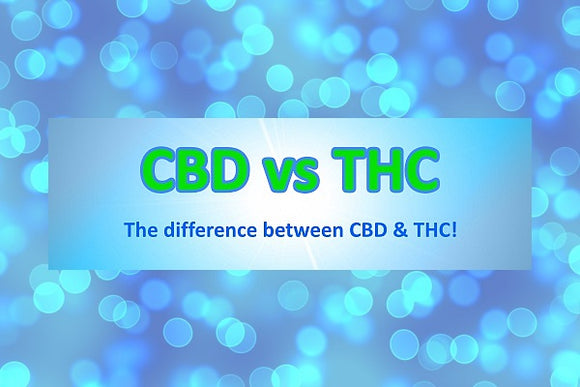 The Difference between CBD vs THC