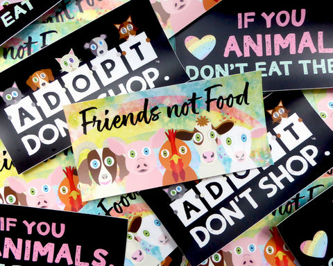 Vegan and Adopt Don't Shop Themed Bumper Stickers