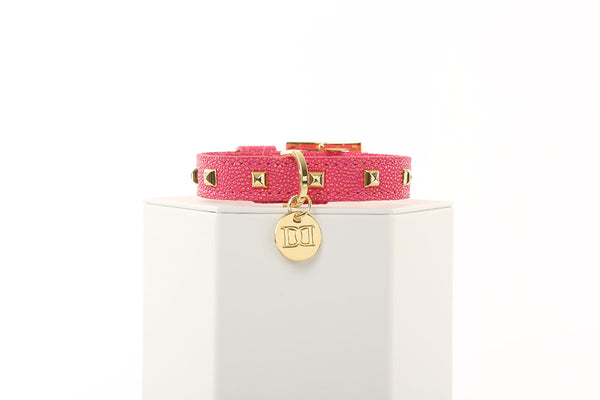 Glitz n Gold Rockstud Dog Collar