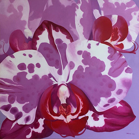 Fuchsia Radiance - Gallery Box Prints