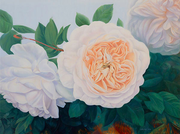 "This beautiful work of art crystallizes in a fine art print features the vibrant ""Mary's Garden"" a stunning floral painting of David Austin roses by renowned Canadian artist Carling Wong-Renger."