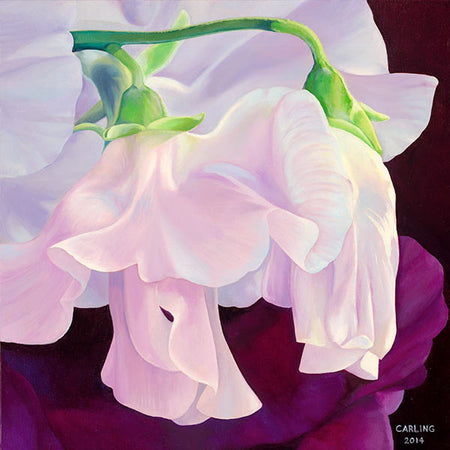 Perpetuite Sweet Peas Art Print, [product-type], Carling Wong-Renger, carlingwongrenger.com