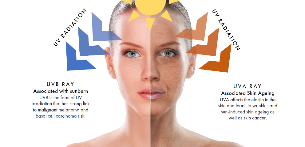 The differences between UVA and UVB radiation on the skin.