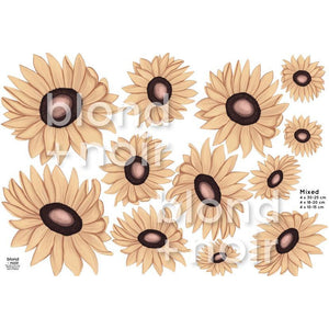Milla's Sunflowers Mixed - wall decals