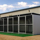 Rhino 5-Run Shed Row Style Dog Kennels with Roof Shelters 6'x12'