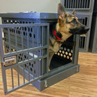 Zinger Collapsible Dog Crate